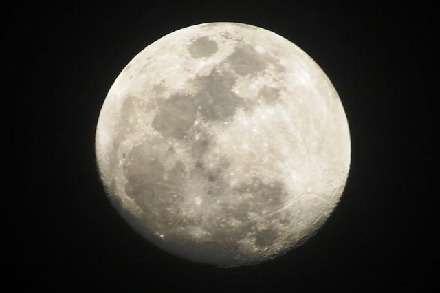 Luna IMG_6410