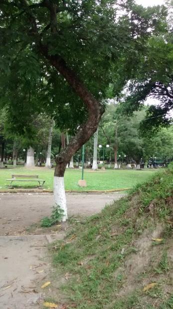 NUNCA. Parque Cuscatlán